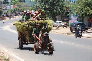 Xe công nông được sử dụng trong ngành nông nghiệp